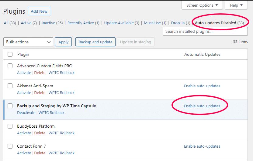 WordPress automatische updates instellen